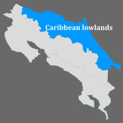 Caribbean lowlands